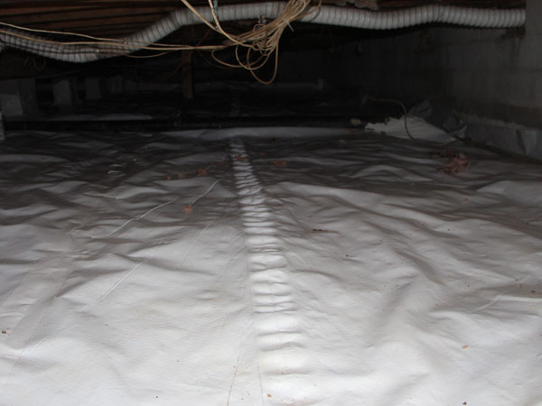Inside a sealed crawlspace