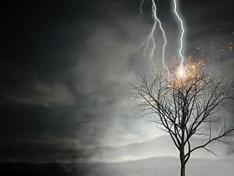 lightning striking a tree causing a power surge